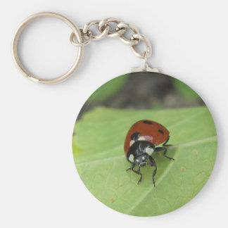 Friendly Ladybug Keychain