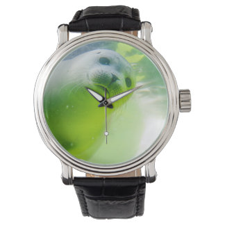 Friendly Seal Wrist Watches