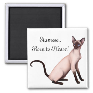 Friendly Young Siamese Cat Customizable  Magnet