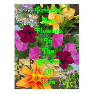 Friends are Flowers ... postcard   PC78