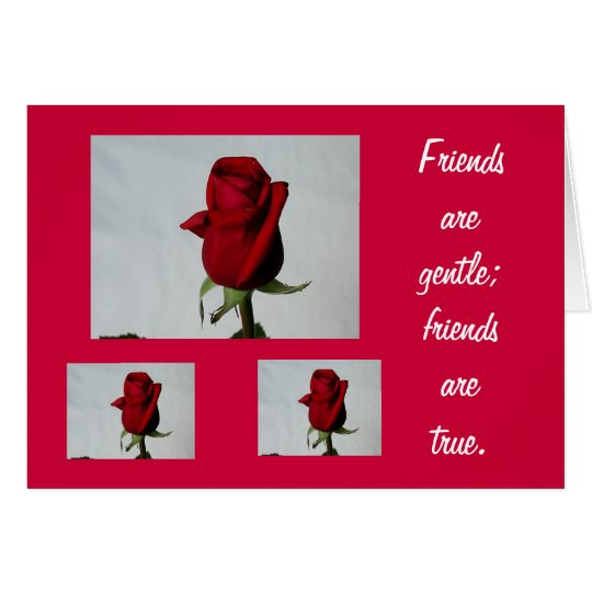 Friends are Gentle Card