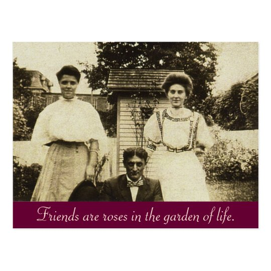 Friends are roses in the garden of life. postcard