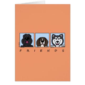 Friends: Bouvier, Beagle & Alaskan Malamute Card
