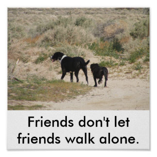 Friends don't let friends walk alone. poster
