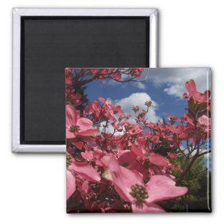 Friends Garden Floral Variety Gift Magnet