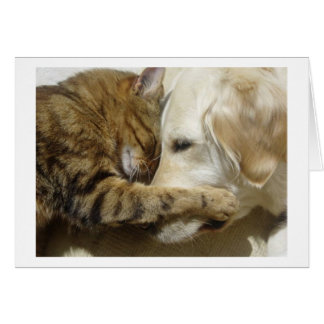 Friends. Greeting Card