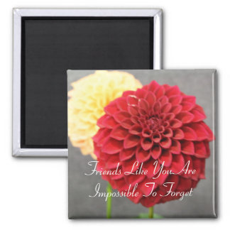 Friends Like You Friendship Quote Dahlia Square Magnet