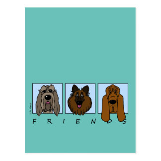 Friends: Spinone Italiano, Tervueren, Bloodhound Postcard