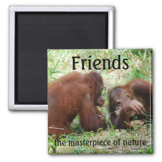 Friends square magnet