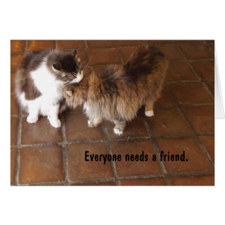 Friendship Card, Peach Canyon Winery Cats Card