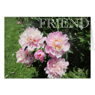Friendship Card with Beautiful Pink Peonies