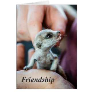 Friendship - FKMP Seasons Greetings Card