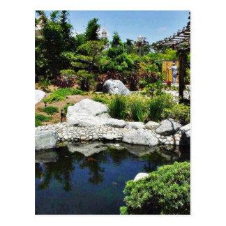 Friendship Garden Balboa Park Pond Postcard