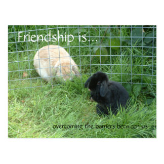 Friendship is..., overcoming the barriers between postcard