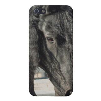 Friesian Beauty Case For iPhone 5/5S