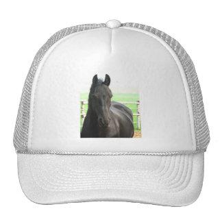 Friesian Horse Baseball Cap Mesh Hats