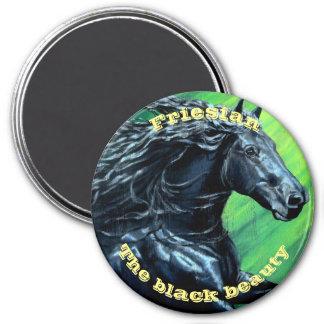Friesian horse, black stallion, black beauty magnet