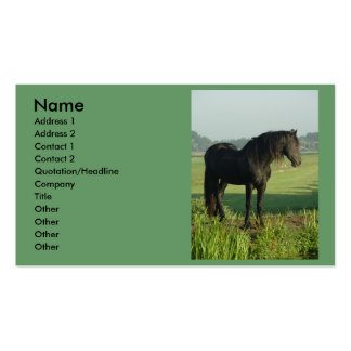 Friesian Horse Double-Sided Standard Business Cards (Pack Of 100)