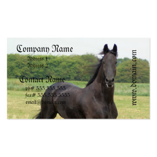 Friesian Horse Business Cards