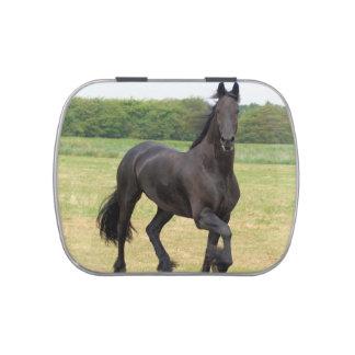 Friesian Horse Candy Tin
