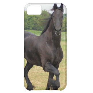 Friesian Horse Cover For iPhone 5C