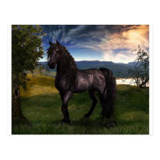 Friesian Horse Custom Art Postcard