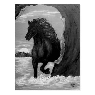 Friesian Horse in the Surf Postcard