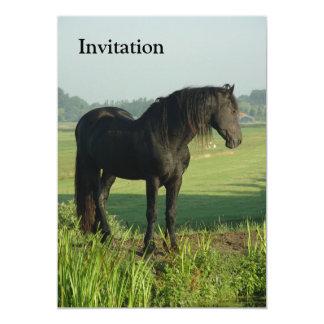 Friesian Horse 5x7 Paper Invitation Card