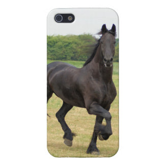Friesian Horse Covers For iPhone 5