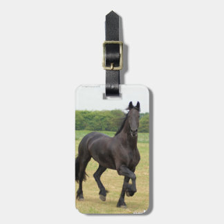 Friesian Horse Luggage Tag