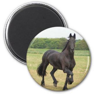 Friesian Horse Magnet Fridge Magnet