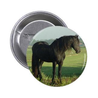 Friesian Horse Pins
