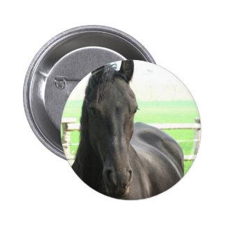 Friesian Horse Round Button