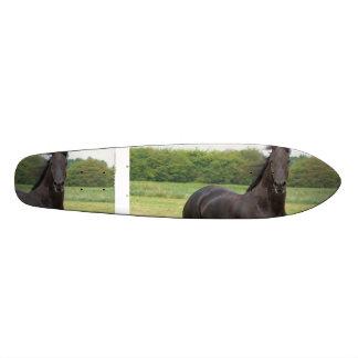 Friesian Horse Skate Decks