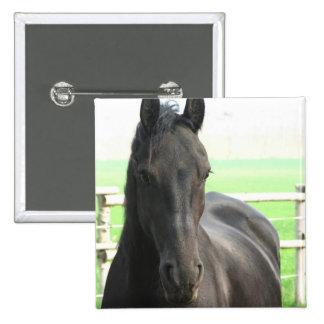 Friesian Horse Square Button