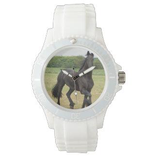 Friesian Horse Watch