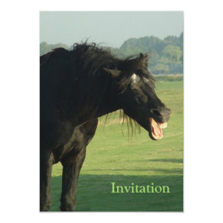 Friesian Horse Yawning 5x7 Paper Invitation Card