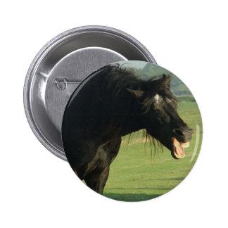 Friesian Horse Yawning Pins