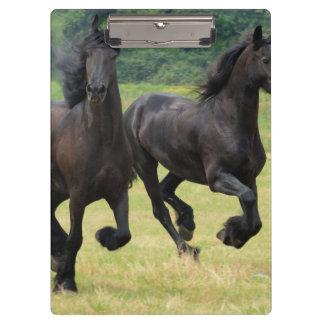 Friesian Horses Clipboard