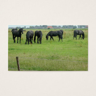 Friesian Horses in Green Meadow Small Photo Card