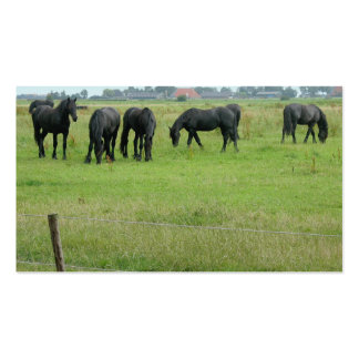 Friesian Horses in Green Meadow Small Photo Card Business Card