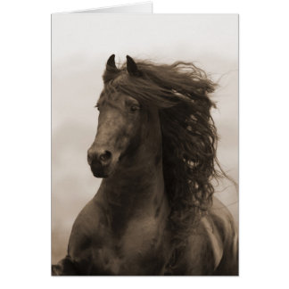 Friesian Runs Horse Greeting Card