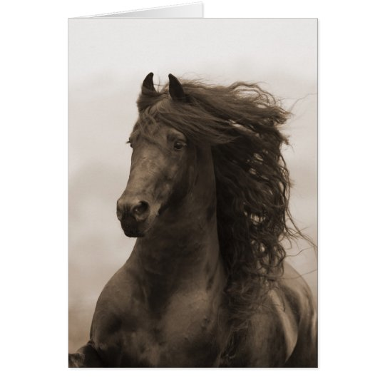 Friesian Runs Horse Greeting Card