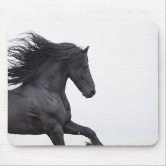 Friesian Runs Mousepad