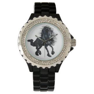 Friesian stallion black beauty horse watches