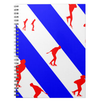 frieze country skating notebooks