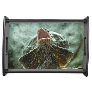 Frilled Lizard Serving Tray