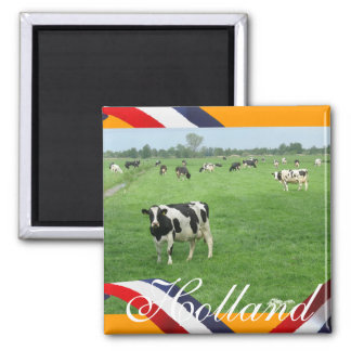 Frisian Cows in Meadow Orange Fridge Magnet Gift