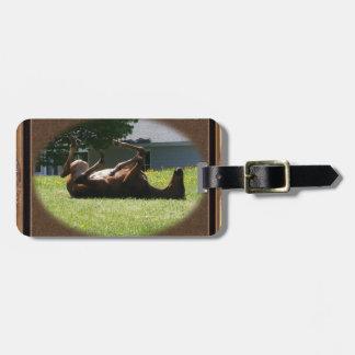 Frisky Foal ~ Luggage Tag