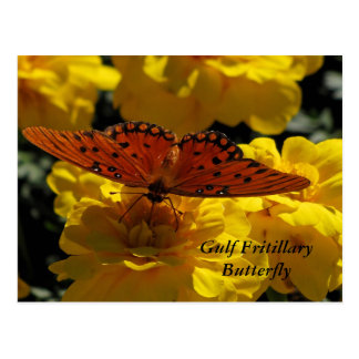 Fritillary butterfly, Yellow Geraniums Postcard